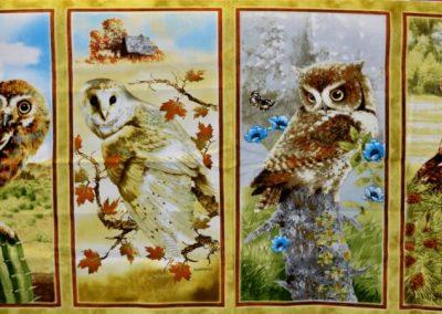 owl panel (1)